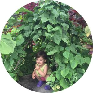 Child peering out from a bean fort